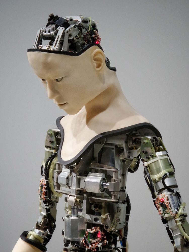 Mensch als Maschine